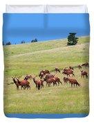 Colorado Elk Herd Duvet Cover