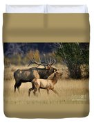 Colorado Elk  Duvet Cover