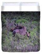 Colorado Moose  Duvet Cover