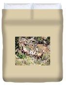 Colorado Mountain Sheep Duvet Cover