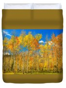 Colorful Colorado Fall Foliage Duvet Cover