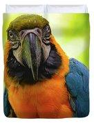 Colorful Gaze Duvet Cover