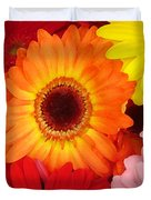 Colorful Gerber Daisies Duvet Cover