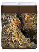 Colorful Lichens Duvet Cover