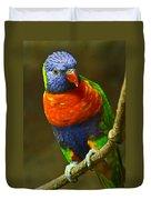 Colorful Lorikeet Duvet Cover