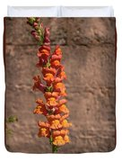 Colorful Snapdragons Duvet Cover