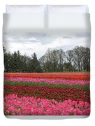 Colorful Tulips Blooming At Tulip Festival Duvet Cover