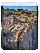 Colorful Wave Of Sandstone In Valley Of Fire State Park Duvet Cover