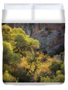 Colors Of Autumn In The Sonoran  Duvet Cover