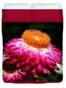 Colors Of Nature - Grand Opening 002 Duvet Cover