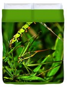 Colors Of Nature - Green Katydid 001 Duvet Cover