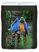 Colourful Macaw Pohakumoa Maui Hawaii Duvet Cover