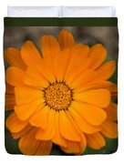 Colourful Orange Signet Marigold  Duvet Cover