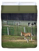 Colt Play With Hay Duvet Cover