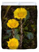 Coltsfoot Trio Duvet Cover