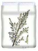Common Juniper Alchemy Plant Duvet Cover