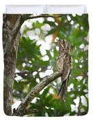 Common Potoo Costa Rica Duvet Cover