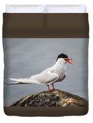 Common Tern Duvet Cover