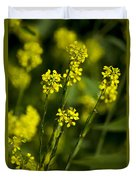 Common Wintercress Flowers Duvet Cover