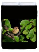 Common Yellowthroat Warbler Duvet Cover