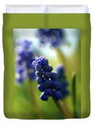 Compact Grape-hyacinth 2 Duvet Cover