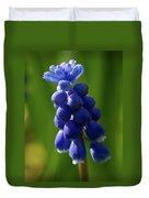 Compact Grape-hyacinth Duvet Cover