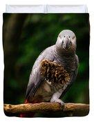Congo African Grey Parrot Duvet Cover