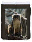Congo Monkey1 Duvet Cover
