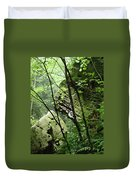 Conkle's Hollow Stone Arch Duvet Cover
