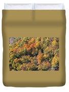 Connecticut Fall Color Duvet Cover