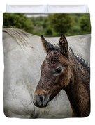 Connemara Foal Duvet Cover
