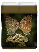 Contact - Detail Of The Butterflies Duvet Cover