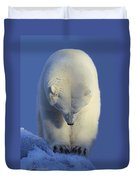 Contemplation Polar Bear Duvet Cover