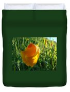 Contemporary Orange Poppy Flower Unfolding In Sunlight 10 Baslee Troutman Duvet Cover