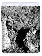 Cooing Rocks Duvet Cover