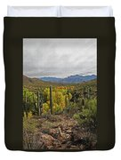 Coon Creek Looking South Duvet Cover