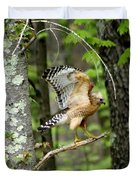 Coopers Hawk In New Hampshire Duvet Cover