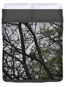 Cooper's Hawk Perched In Tree Duvet Cover