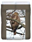 Coopers Hawk Winter Duvet Cover