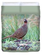 Copper Pheasant Duvet Cover
