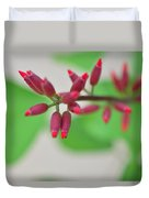 Coral Bean Plant Duvet Cover