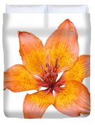 Coral Colored Lily Isolated On White Duvet Cover