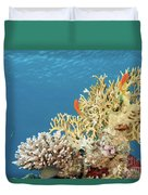 Coral Reef Eco System Duvet Cover