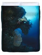 Coral Reef Wall With Seafan And Hard Duvet Cover