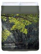 Corkscrew Swamp - In The Autumn Duvet Cover