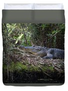 Corkscrew Swamp - Really Big Alligator Duvet Cover