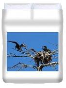 Cormorant Teenager In Nest Begging For Food Duvet Cover