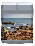 Cormorants And Seagulls Resting Duvet Cover