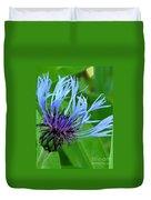 Cornflower Centaurea Montana Duvet Cover