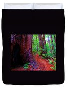 Cosmic Redwood Trail On Mt Tamalpais Duvet Cover